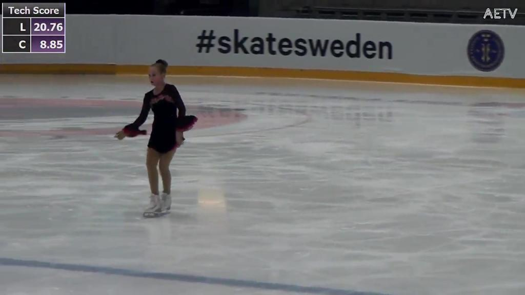 SM i konståkning 2018 NKT Arena Karlskrona - 14 Dec 12:00 - 21:20