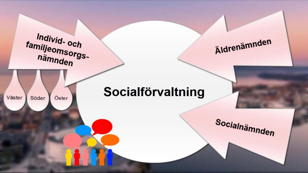 Socialförvaltningens organisation