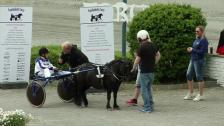 Ponny landsleir - løp 6, lørdag
