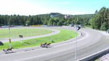 Klosterskogen 1. september